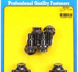 ARP Tru-Trac ring gear bolt kit 3003001