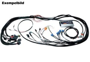 Ford 89-95 5.0L Haltech PS2000 inkl. färdig motorhärva