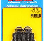 ARP M10 x 1.25 x 20 hex black oxide bolts 6631001