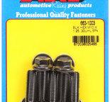ARP M10 x 1.25 x 30 hex black oxide bolts 6631003
