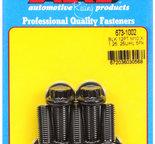 ARP M10 x 1.25 x 25 12pt black oxide bolts 6731002